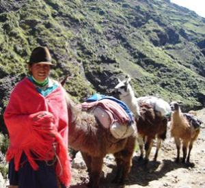 Ecuadorian woman transporting goods to market.