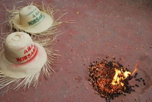 "Burning Monsanto hybrid seed ""donated"" to Haiti"