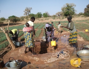 Women program participants watering their crops.