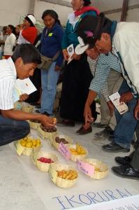 Andean farmers at a Ekorural-sponsored seed fair in Ambuquí, Ecuador.