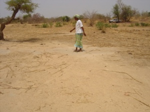 Tantamba, a village leader, explaining challenges to farming in the Sahel.