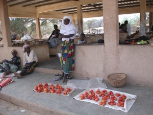 Women processing vegetables grown on agro-ecological village farms in eastern Burkina Faso.