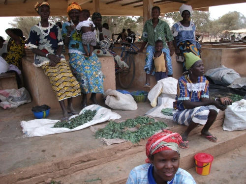 Groundswell sponsored CBO cross visit to Zandoma Province, Burkina Faso